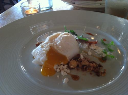 bl pic egg